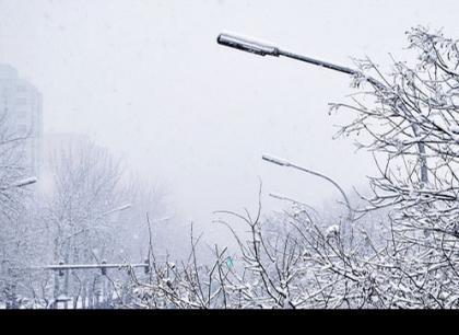 白色情人节,3月14日,石家庄大雪飞舞。。